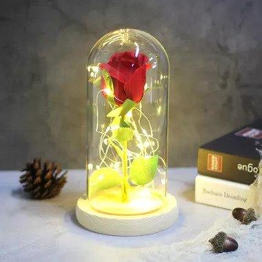 rose rouge éternelle sous cloche